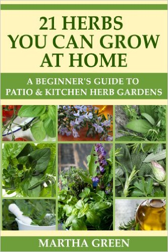 21 Herbs You Can Grow at Home